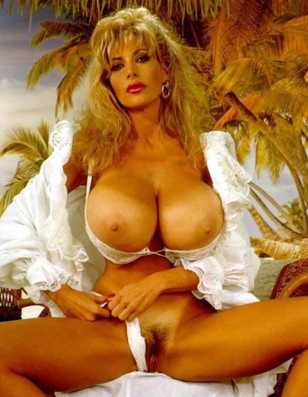 порно онлайн большие груди или памела андорсан