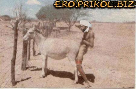 porno-prikoli-na-vulits-devushki-kolgotkah