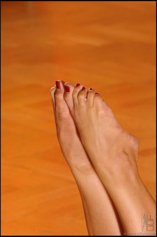 Сильвия саинт ножки фото 47871 фотография