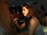 Невеста активно отдыхает в ночном клубе